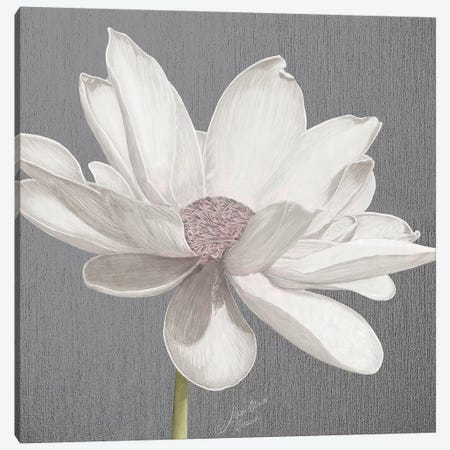 Vintage Lotus on Grey I Canvas Print #MEC90} by Marie Elaine Cusson Canvas Art