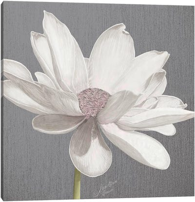 Vintage Lotus on Grey I Canvas Art Print