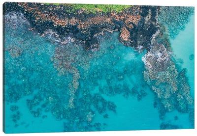 Hawaii View IV Canvas Art Print