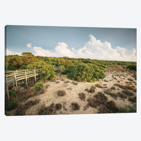 First Landing Dunes I Canvas Print #MED1} by Adam Mead Canvas Print