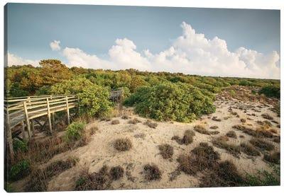 First Landing Dunes I Canvas Art Print