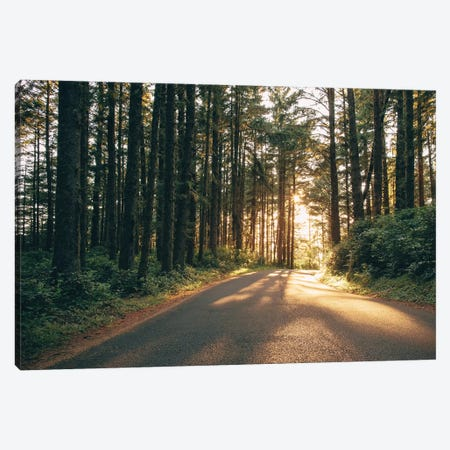 Pacific Northwest Oregon III Canvas Print #MED22} by Adam Mead Canvas Artwork
