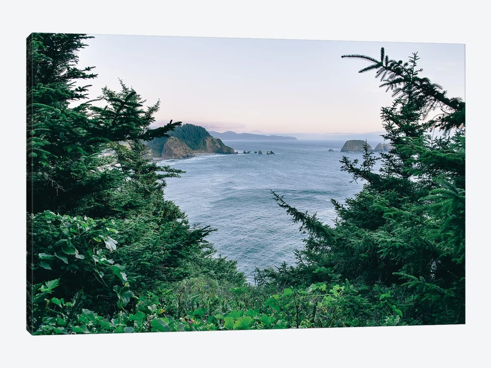Pacific Northwest Oregon IV by Adam Mead 1-piece Canvas Print