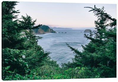 Pacific Northwest Oregon IV Canvas Art Print