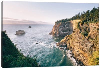 Pacific Northwest Oregon VII Canvas Art Print