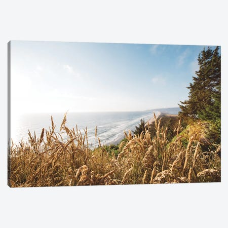 Pacific Northwest Oregon VIII Canvas Print #MED28} by Adam Mead Canvas Wall Art