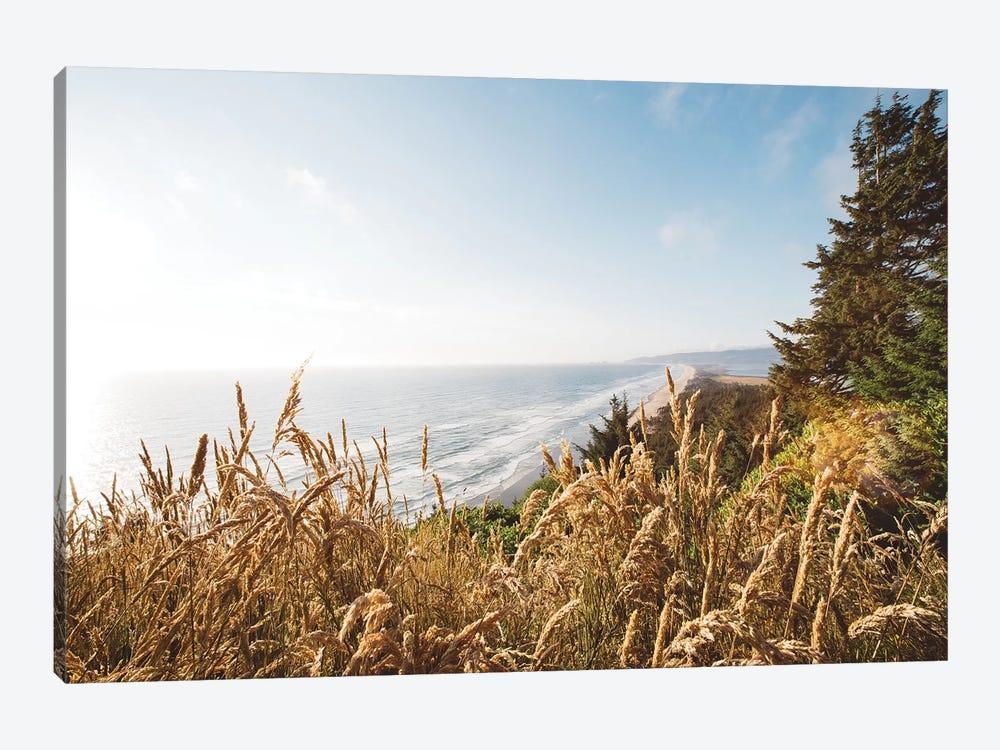 Pacific Northwest Oregon VIII by Adam Mead 1-piece Canvas Art