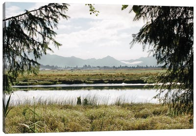 Pacific Northwest Oregon X Canvas Art Print