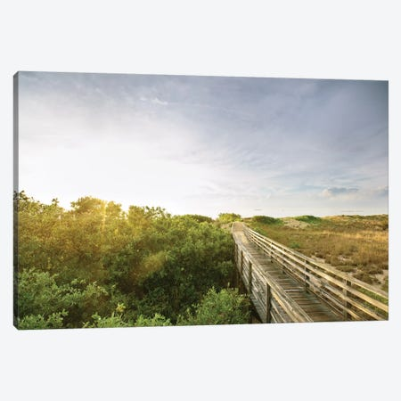 First Landing Dunes II Canvas Print #MED2} by Adam Mead Art Print