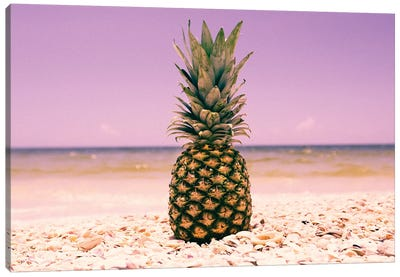 South Florida Pineapple I Canvas Art Print