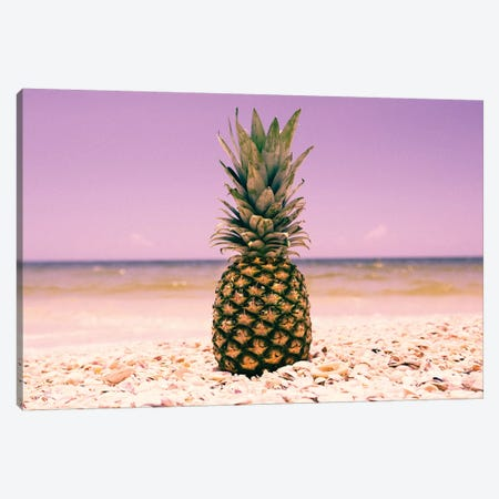 South Florida Pineapple I Canvas Print #MED37} by Adam Mead Canvas Art