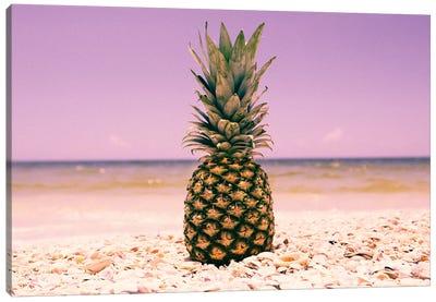 South Florida Pineapple I Canvas Art Print