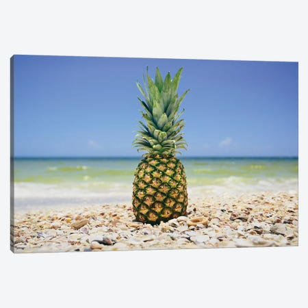 South Florida Pineapple II Canvas Print #MED38} by Adam Mead Canvas Print