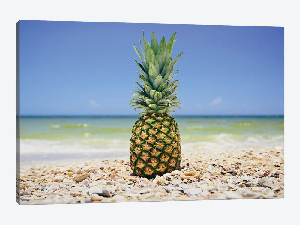 South Florida Pineapple II 1-piece Art Print