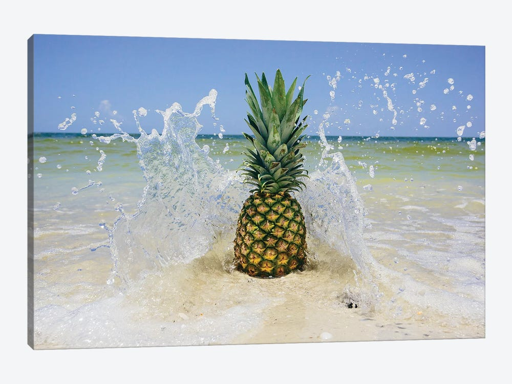 South Florida Pineapple III by Adam Mead 1-piece Canvas Artwork