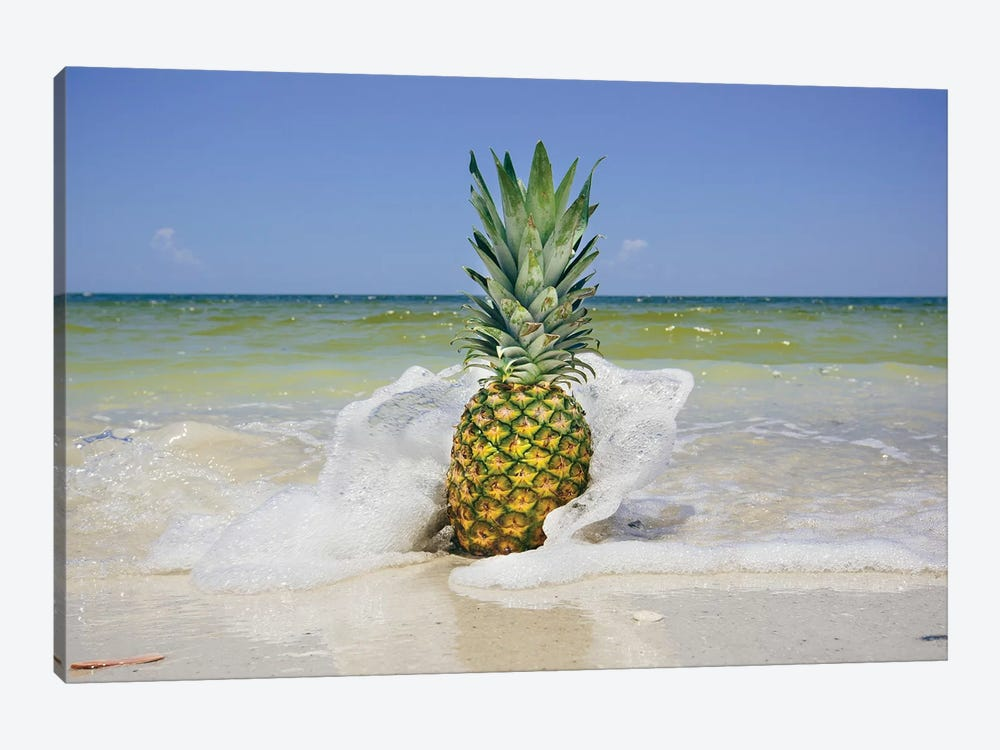 South Florida Pineapple IV by Adam Mead 1-piece Canvas Artwork