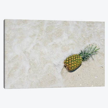 South Florida Pineapple V Canvas Print #MED41} by Adam Mead Canvas Artwork