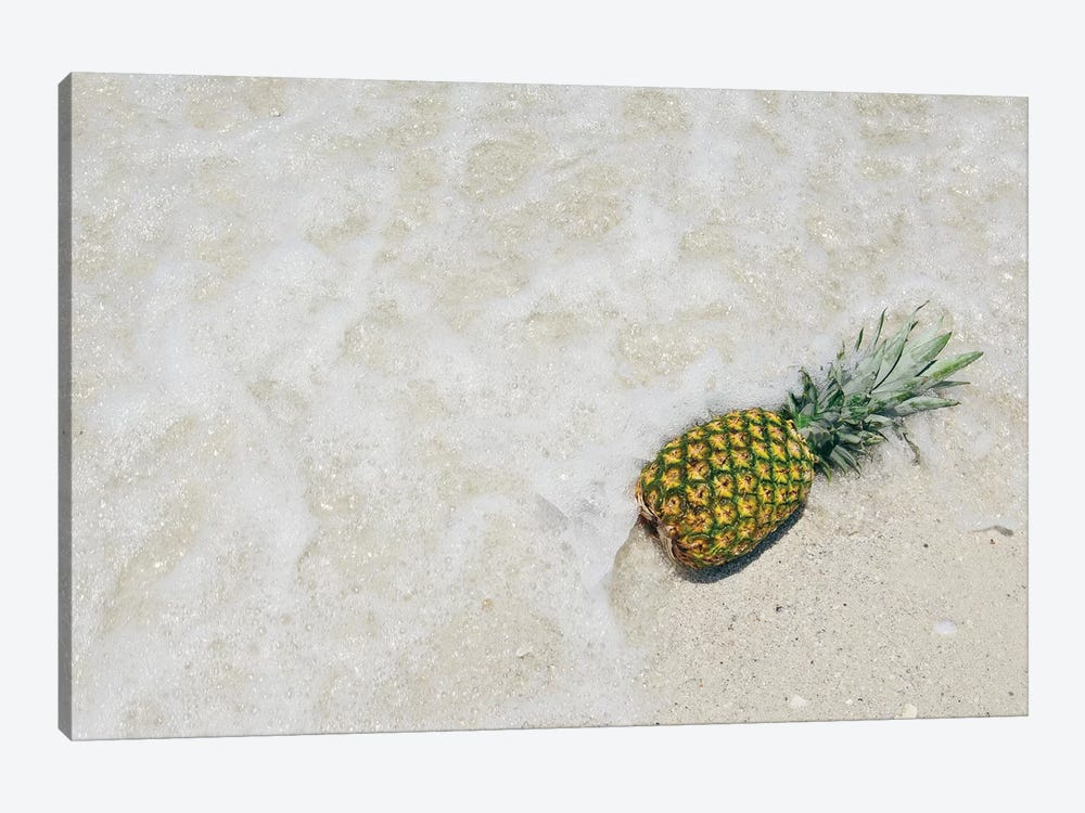 South Florida Pineapple V by Adam Mead 1-piece Canvas Print