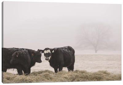 Farm Study I Canvas Art Print