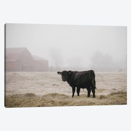 Farm Study II Canvas Print #MED43} by Adam Mead Canvas Artwork