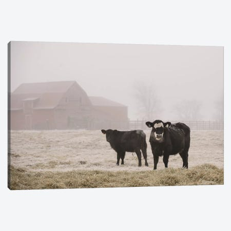 Farm Study III Canvas Print #MED44} by Adam Mead Canvas Art Print