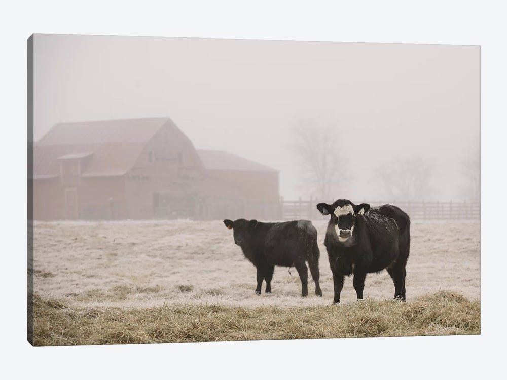 Farm Study III by Adam Mead 1-piece Canvas Art
