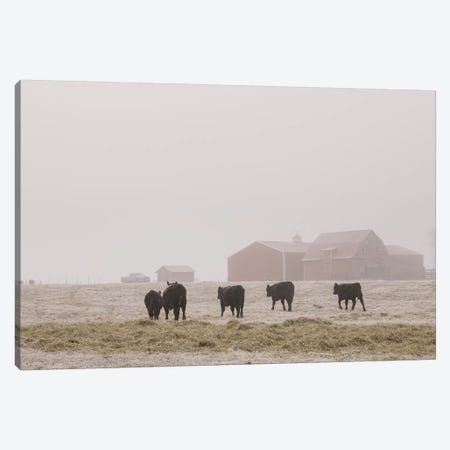 Farm Study IV Canvas Print #MED45} by Adam Mead Canvas Art Print