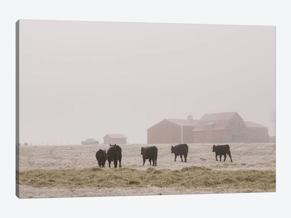 Farm Study IV by Adam Mead 1-piece Art Print