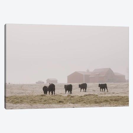 Farm Study IV Canvas Print #MED45} by Adam Mead Canvas Art Print