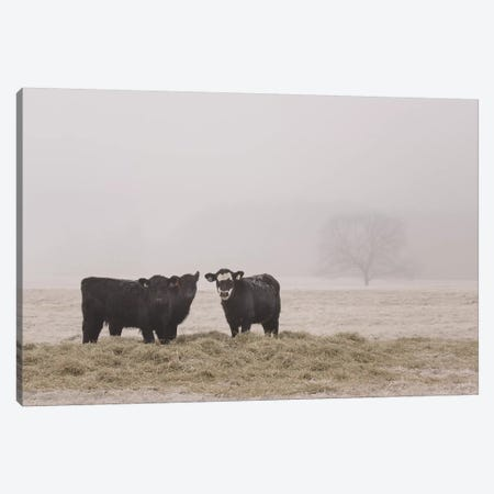 Farm Study V Canvas Print #MED46} by Adam Mead Canvas Art Print