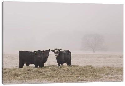 Farm Study V Canvas Art Print