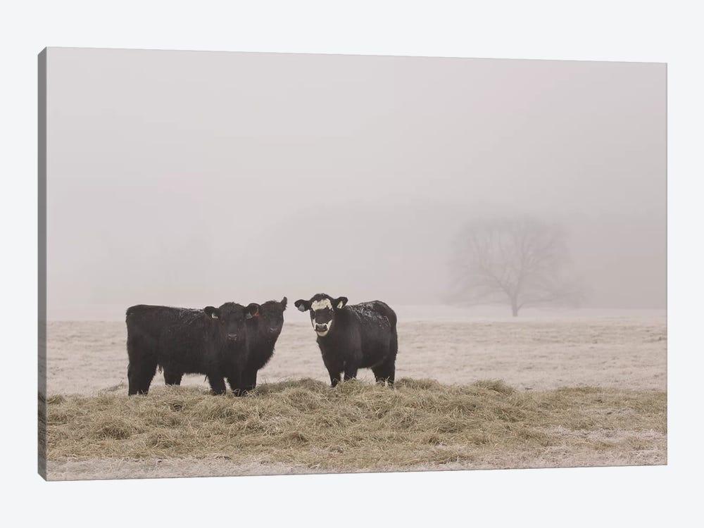 Farm Study V by Adam Mead 1-piece Canvas Wall Art