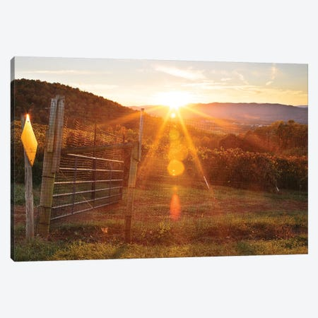 Farm Study VII Canvas Print #MED48} by Adam Mead Canvas Wall Art