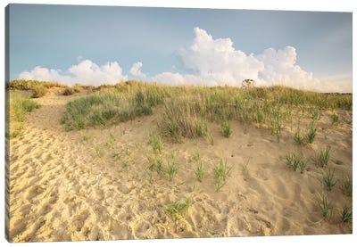 First Landing Dunes IV Canvas Art Print