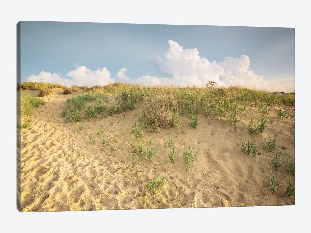 First Landing Dunes IV by Adam Mead 1-piece Canvas Artwork