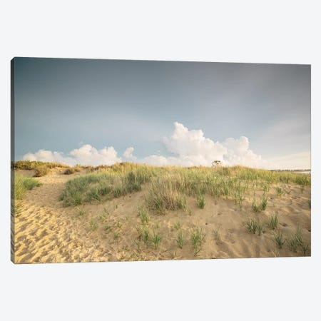 First Landing Dunes V Canvas Print #MED5} by Adam Mead Canvas Artwork