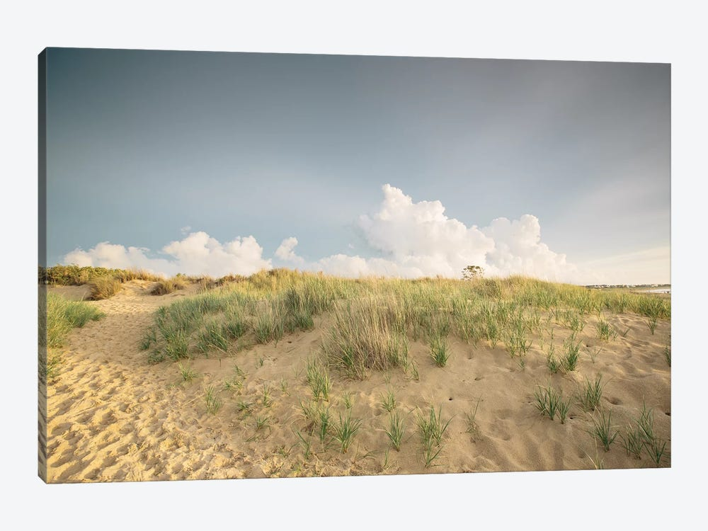 First Landing Dunes V by Adam Mead 1-piece Canvas Print