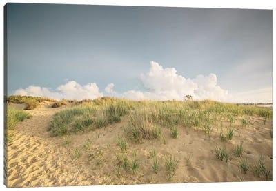 First Landing Dunes V Canvas Art Print