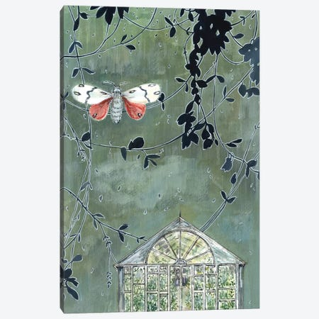 Greenhouse And Moth Canvas Print #MET16} by Miri Eshet Canvas Art