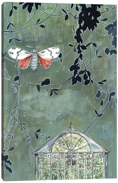 Greenhouse And Moth Canvas Art Print