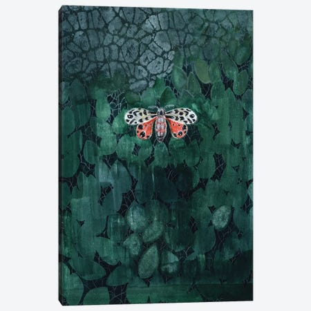 Moth On Leaves Canvas Print #MET23} by Miri Eshet Canvas Wall Art