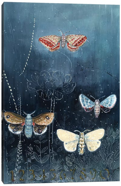 Night Moths On Blue Canvas Art Print