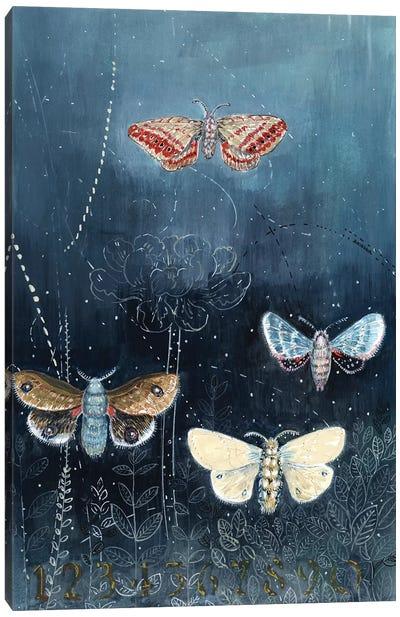 Night Moths On Blue Canvas Art Print