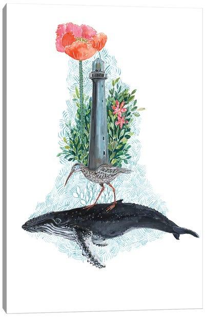 Humpback Whale Dreams Canvas Art Print