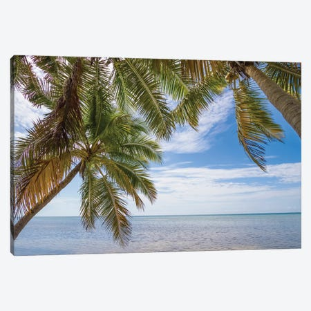 Florida Gorgeous Oceanside Canvas Print #MEV217} by Melanie Viola Canvas Art