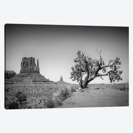 Monument Valley West Mitten Butte And Tree 3-Piece Canvas #MEV229} by Melanie Viola Canvas Art