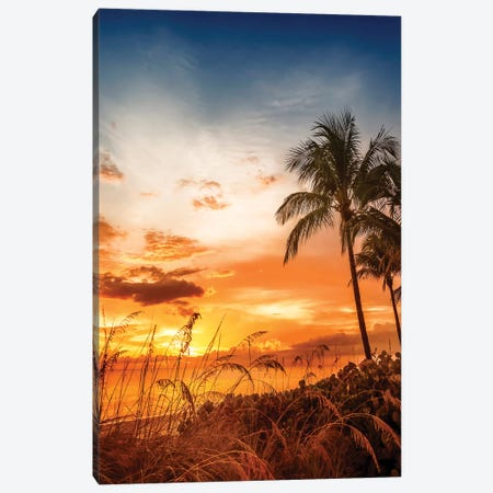 Bonita Beach Romantic Sunset Canvas Print #MEV250} by Melanie Viola Canvas Print