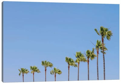 California Vibes Canvas Art Print