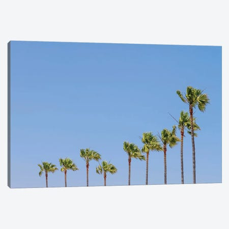 California Vibes Canvas Print #MEV251} by Melanie Viola Canvas Art Print