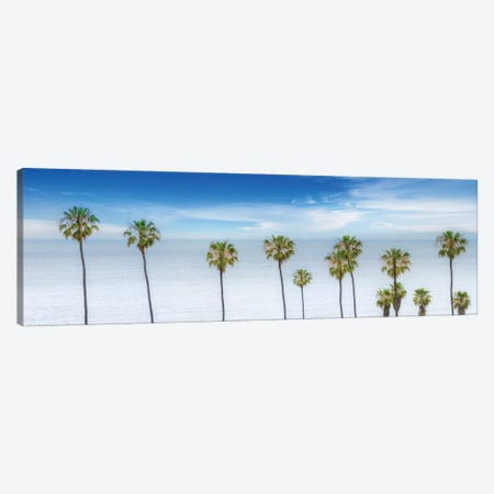 Lovely Palm Trees At The Ocean Canvas Print #MEV273} by Melanie Viola Canvas Print